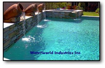Custom Pool with Water Features